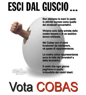 Esci dal guscio Vota COBAS